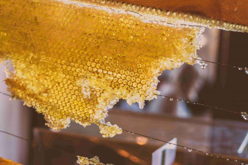 Propolis kopen bij de honingwinkel